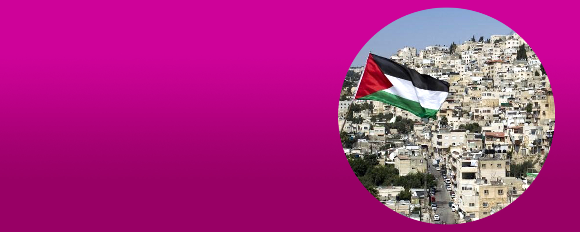 Stop U.S. non-profit organizations from funding settler groups in Palestine!
