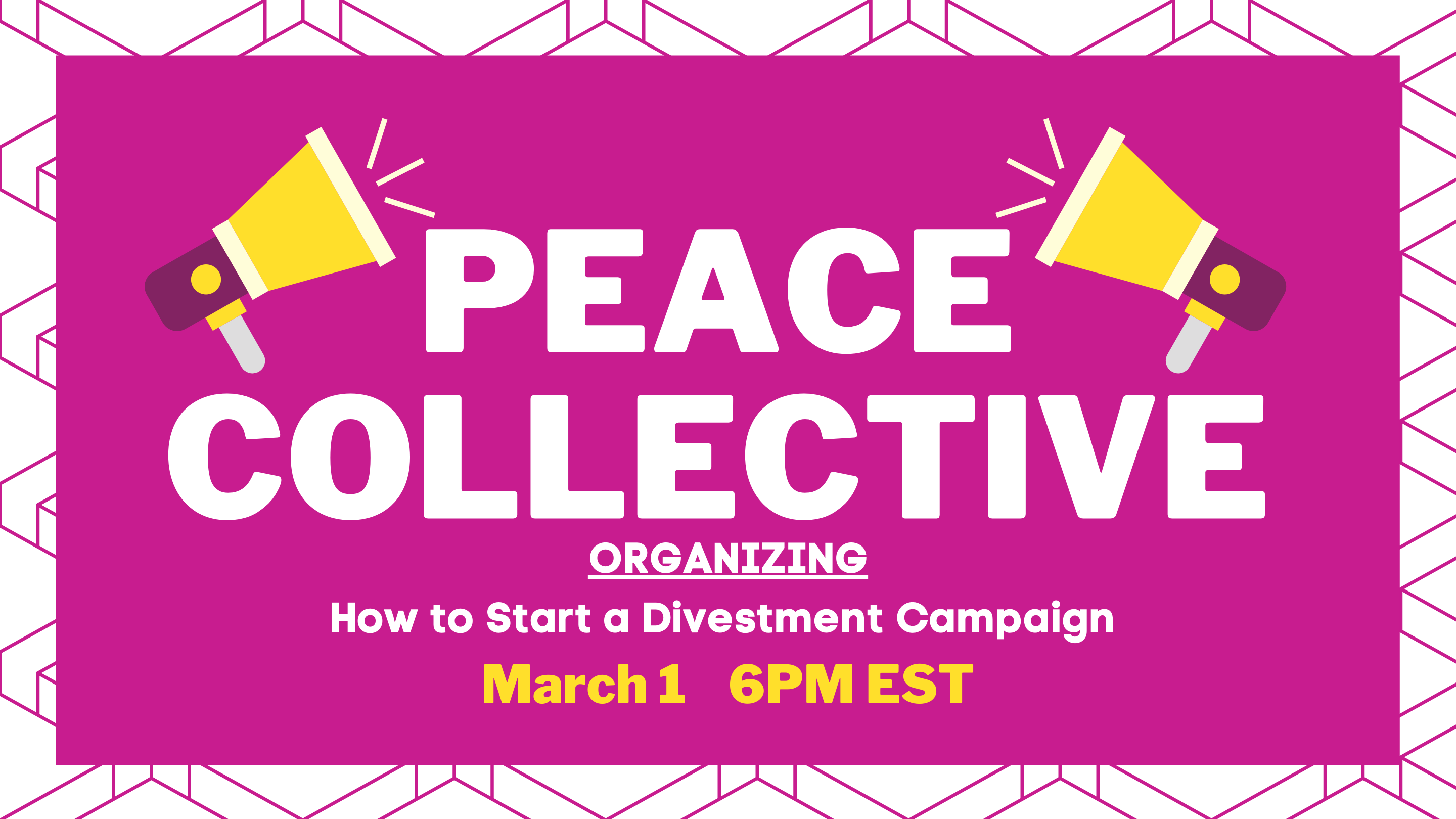 Peace Collective Gathering: How to Start a Divestment Campaign