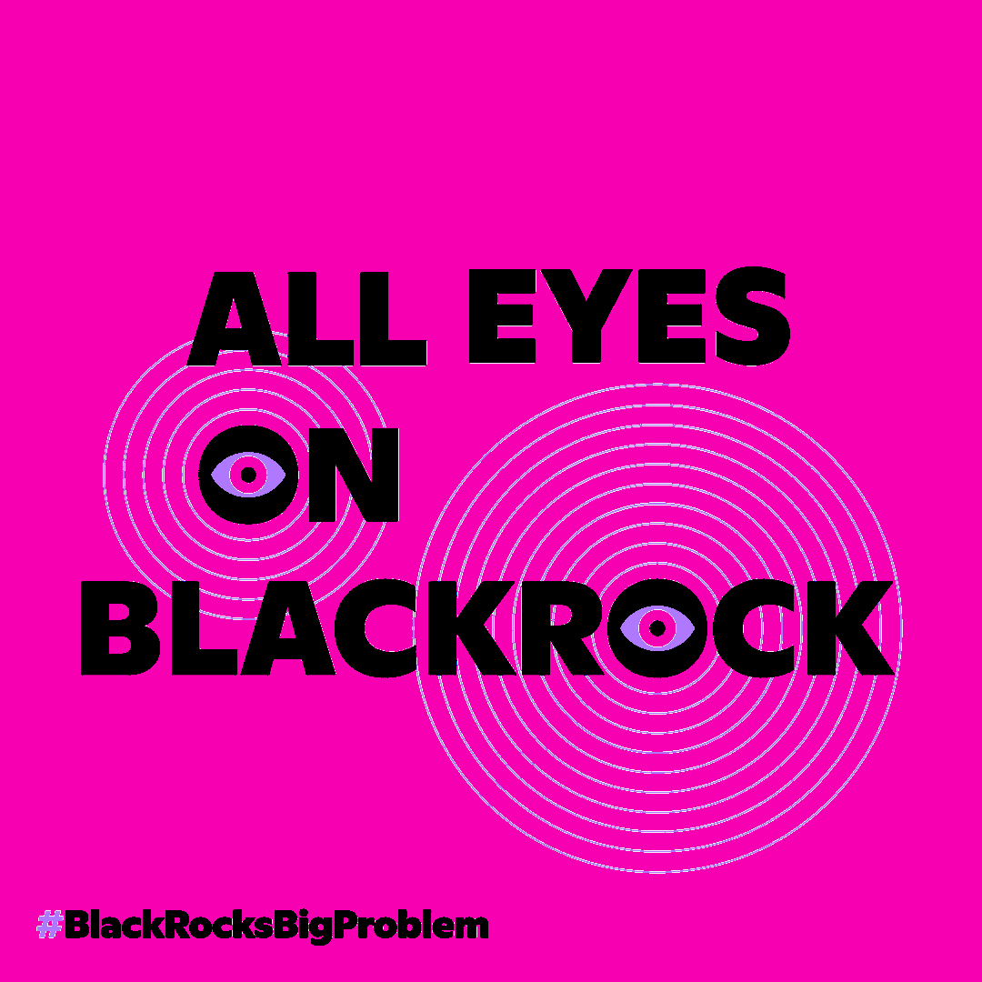 Code Pink:  All Eyes on Blackrock @ BlackRock's San Francisco office
