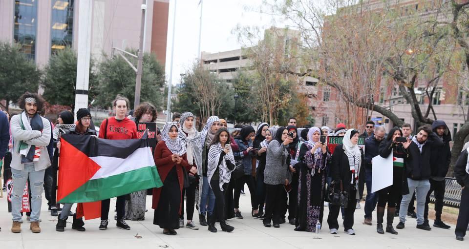 dallas palestine coalition