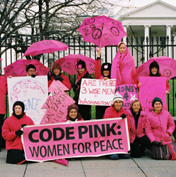 Pink Lady Code
