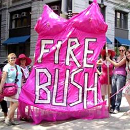 firebush_crop.jpg