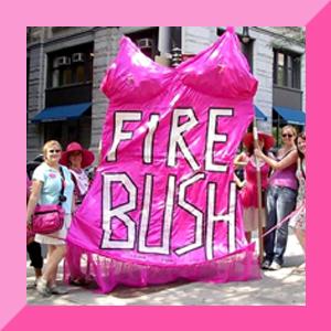 firebush.jpg