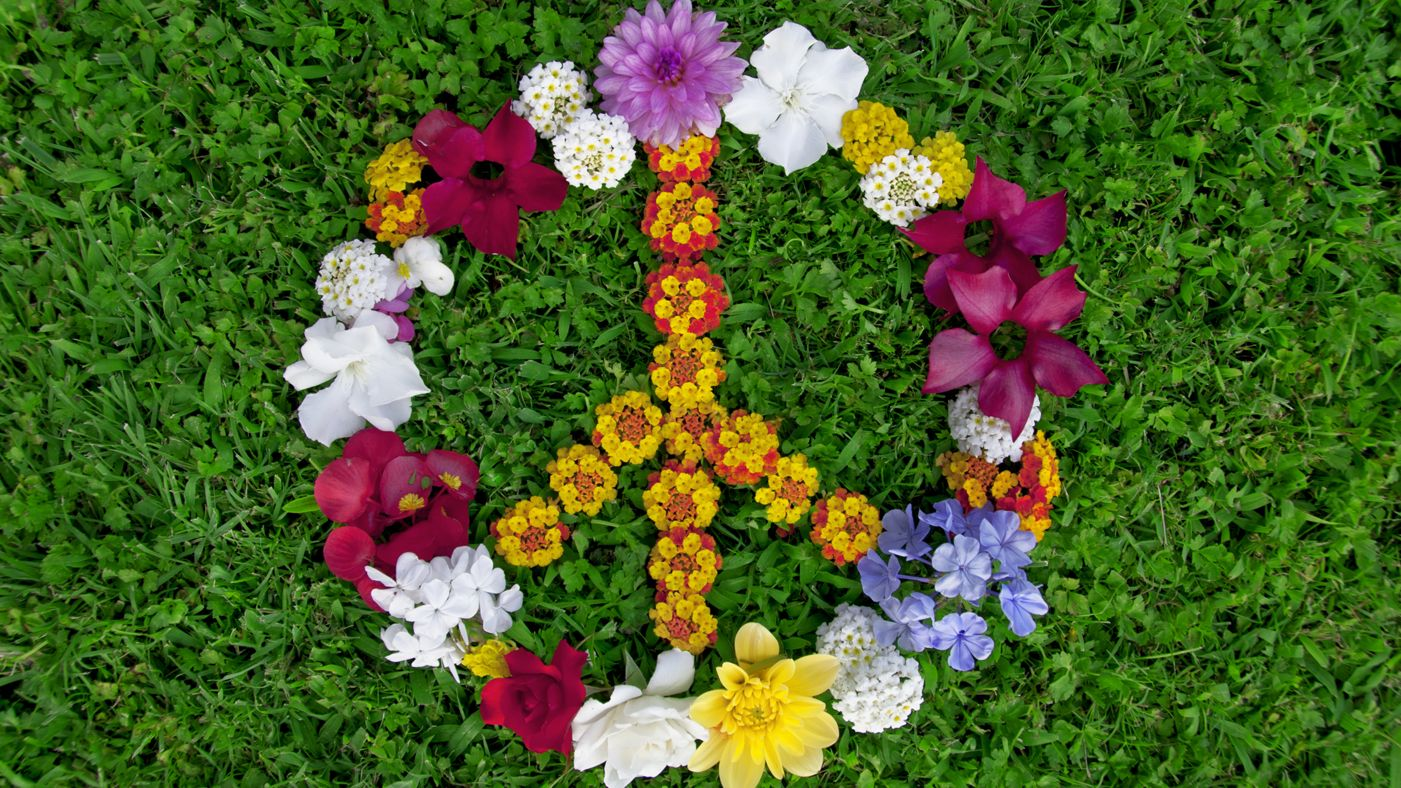 FlowerPeace.jpg