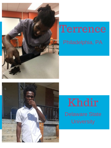 blog_updated_terrence.png