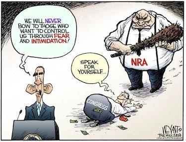 NRA_cartoon.jpg