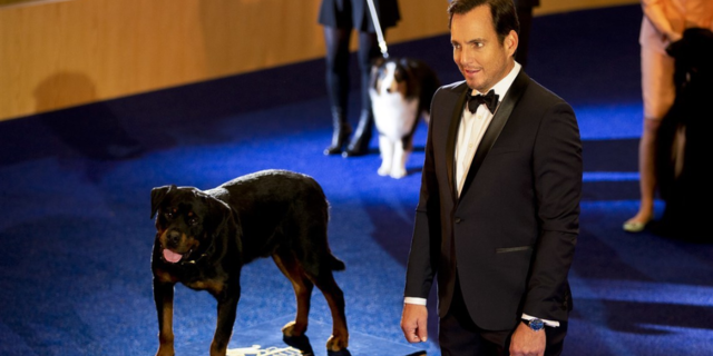 Cinemas respond to Collective Shout calls to withdraw Show Dogs