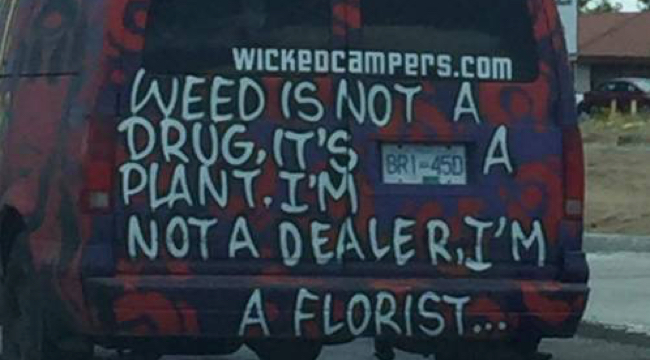 Ad Standards upholds complaints against Wicked Campers for trivialising drug use