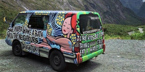 Federal Minister for Women Kelly O'Dwyer calls for national response to Wicked Campers