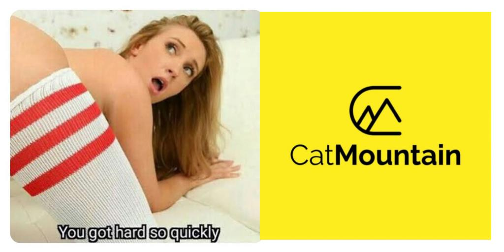 Brisbane car loan company porn-themed ads condemned - Updated: Flash WIN!