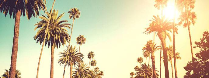 LA_Sun