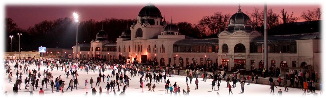 ice-skating-rink.jpg