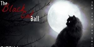 blkcatball.jpg
