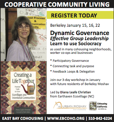 Dynamic Governance workshop in Berkeley