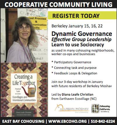 Dynamic Governance workshop in Berkeley