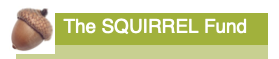 The Squirrel Fund:Acorn logo