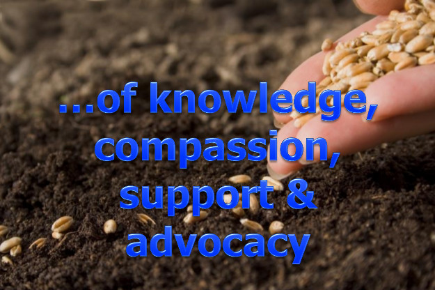image of hand planting seeds, with text of knowledge, compassion, support, and advocacy