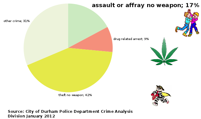 graph of unarmed theft = 42%, other = 31%, unarmed assault = 17%, drug = 9%
