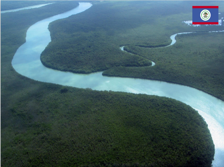 aerial photo of river winding through jungle