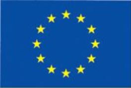 image of European Union flag