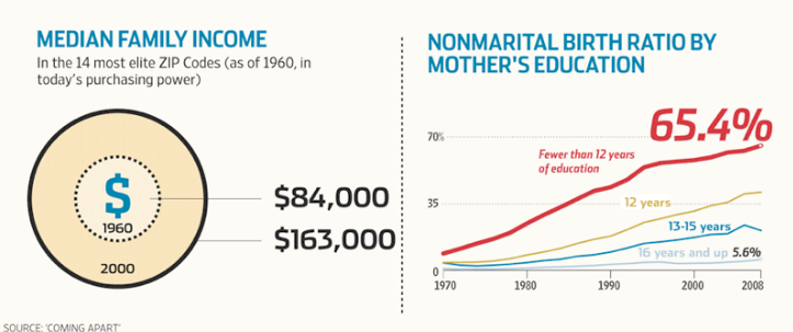 graphs of median family income in high-income zip codes,         in 1960 vs 2000, and nonmarital birth ratios within         groups of mother's educational experience across 1970 thru 20008