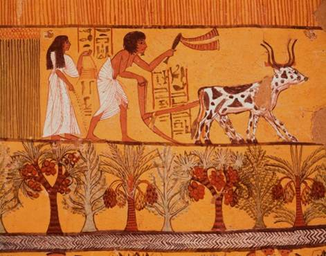 Egyptian artwork depicting palm trees