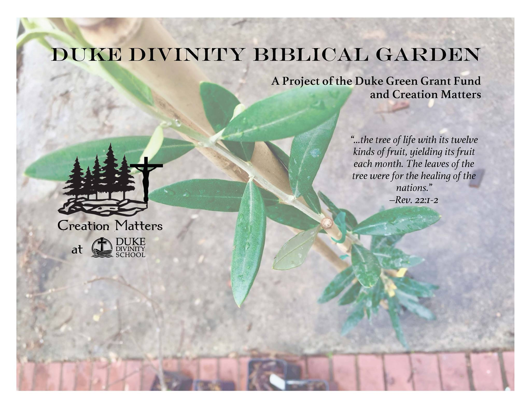 sign for Bibilcal Garden at Duke Divinity School