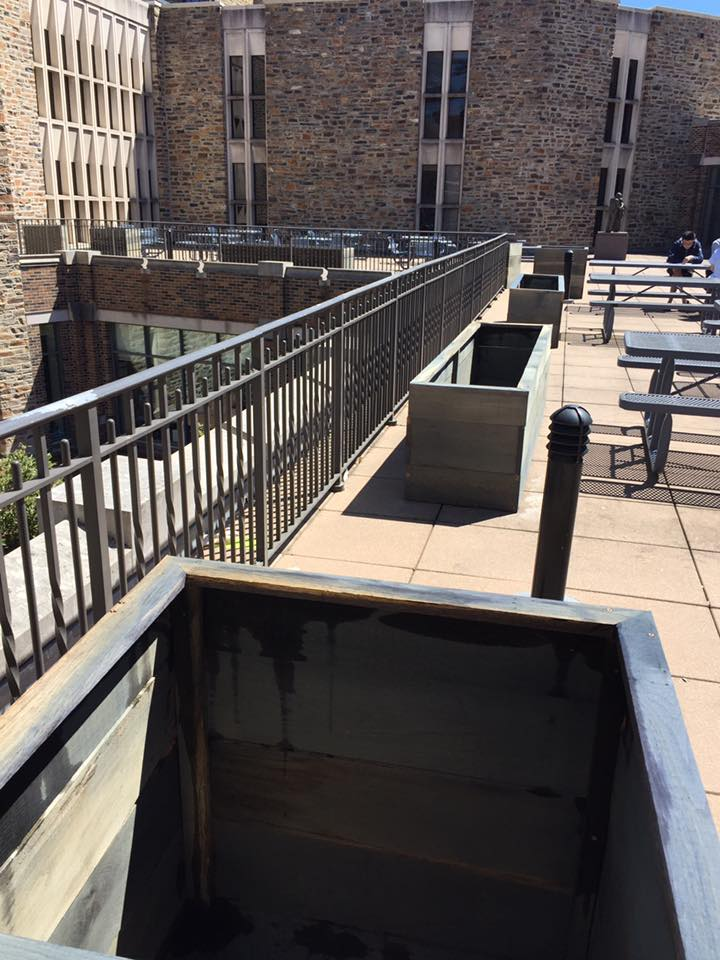 planter boxes on patio at Duke Divinity School