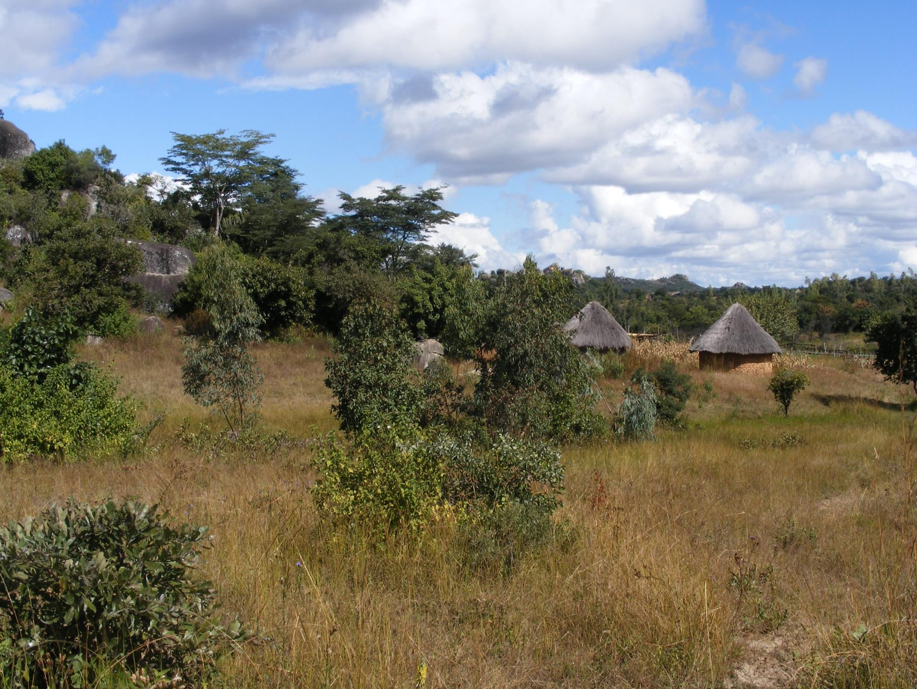 photo of some round huts with thatched roofs