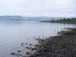 photo of a shoreline of The Sea of Galilee