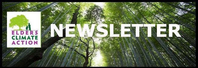eca_newsletter_logo.jpg