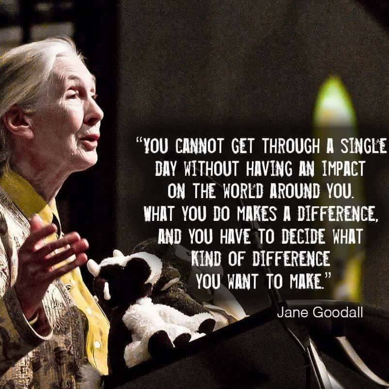 What_Kind_of_Difference_Jane_Goodall.jpg