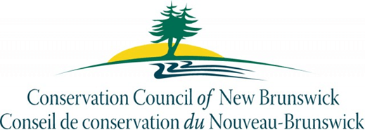 CCNB_Logo.png
