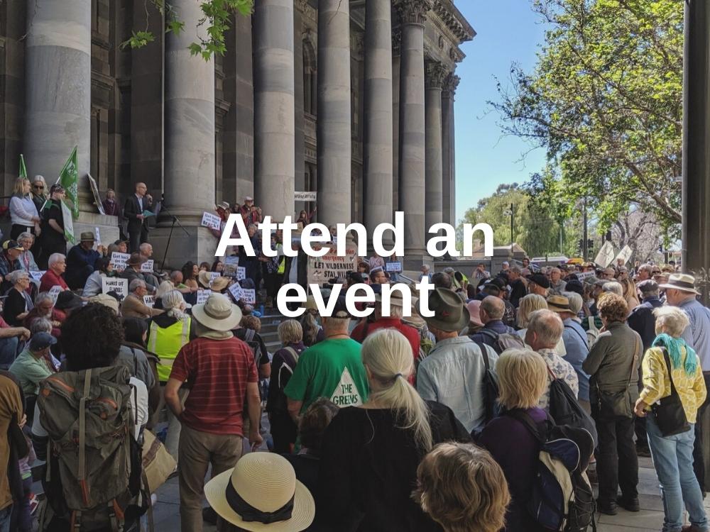 Attend an event