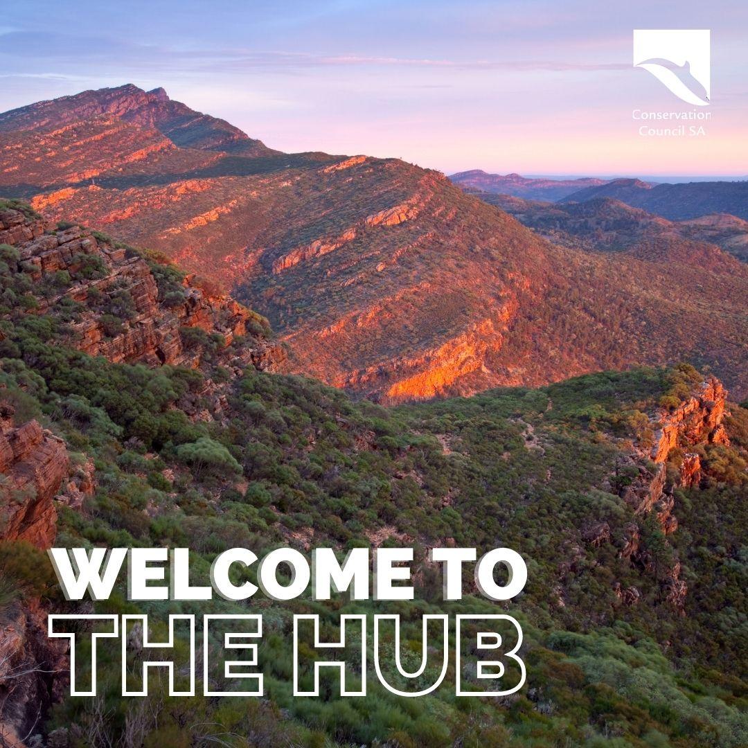 The Hub newsletter - Spring 2021