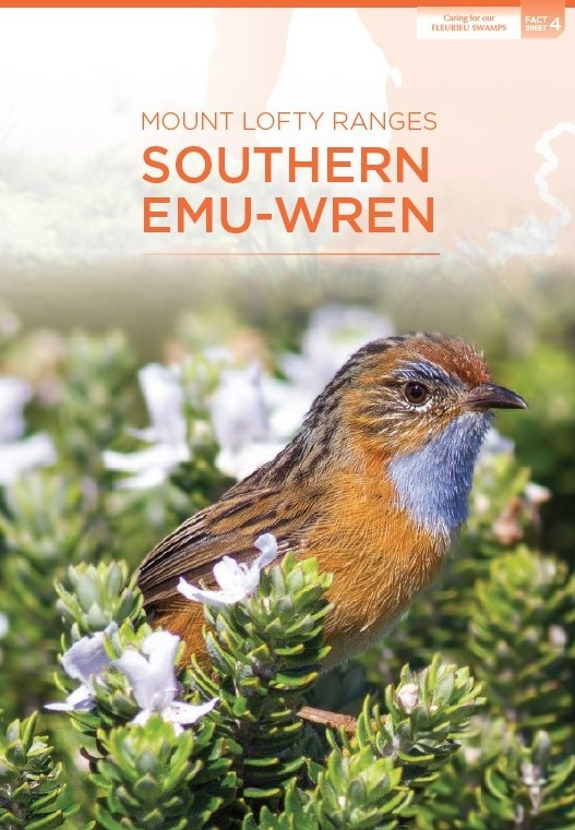 emu wren fact sheet cover