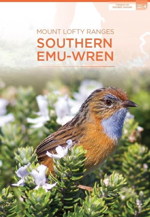 emu wren fact sheet cover