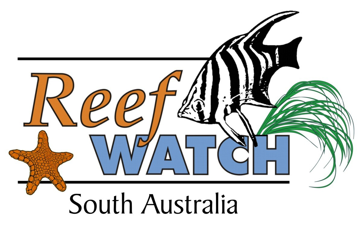 reef_watch_logo.jpg