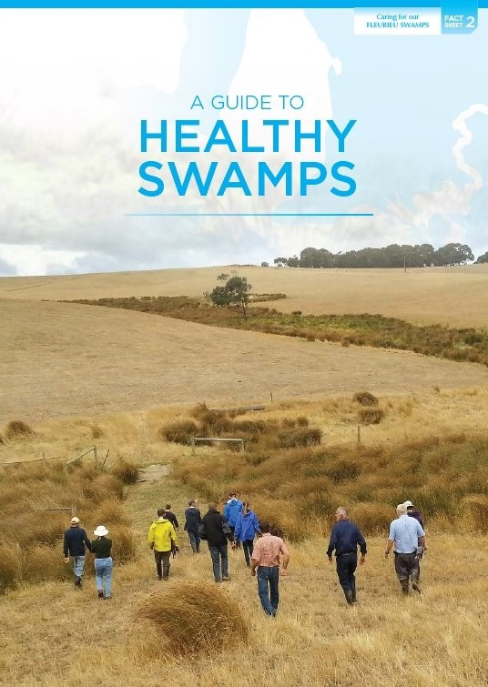 guide_to_healthy_swamps_fact_sheet