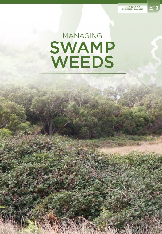managing_swamp_weeds
