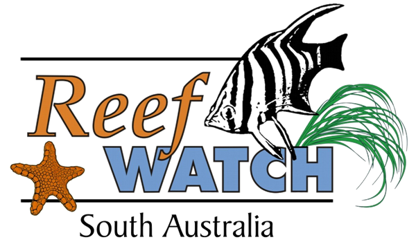 Reefwatch