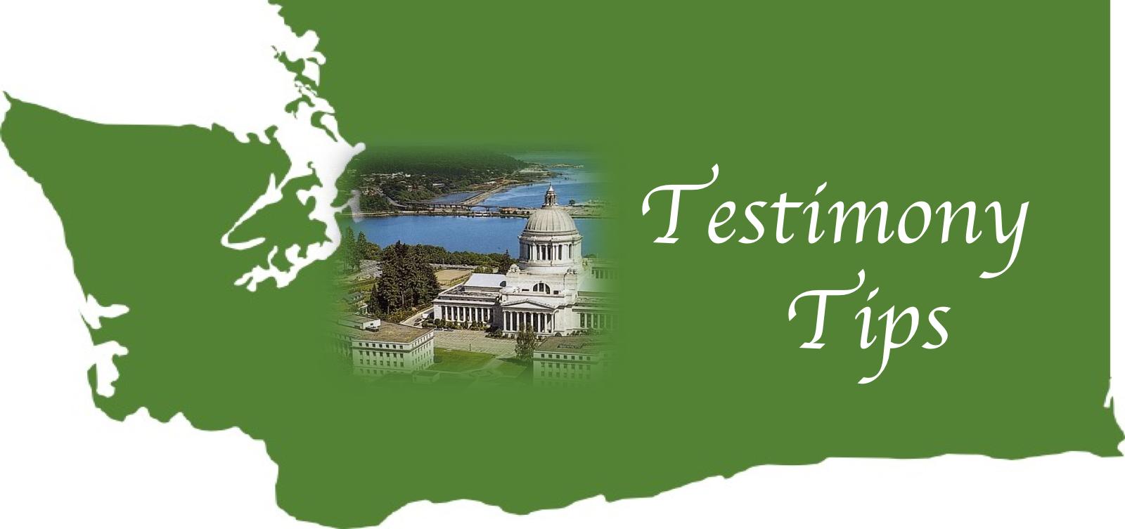 TestimonyTips.png