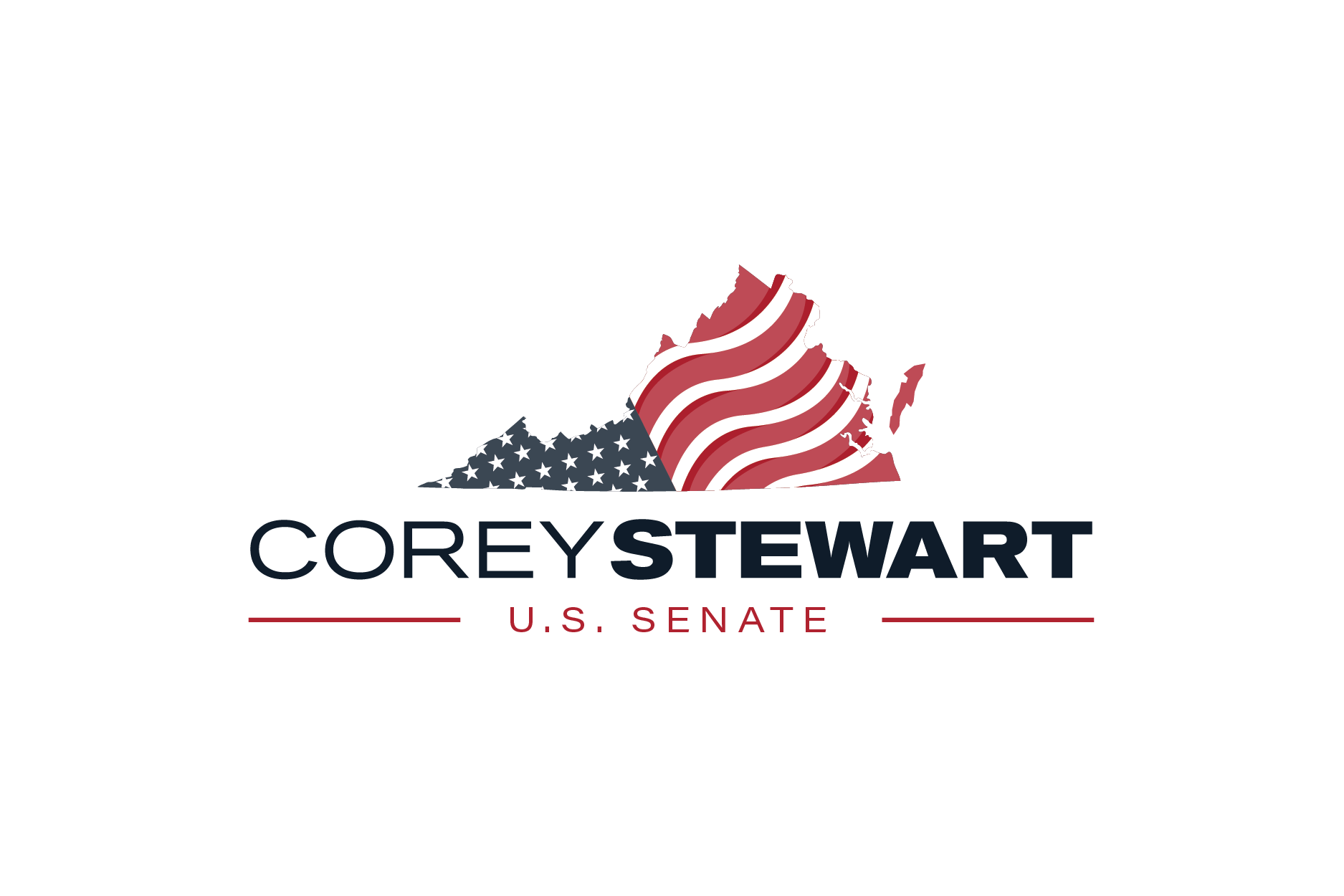 Image Result For Stewart For Senate