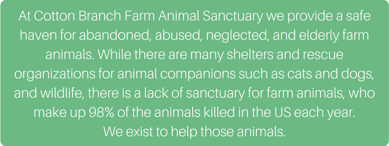 At_Cotton_Branch_Farm_Animal_Sanctuary_we_provide_a_safe_haven_for_abandoned__abused__neglected__and_elderly_farm_animals._While_there_are_many_shelters_and_rescue_organizations_for_animal_companions_such_as_cats_and_(1).png