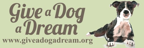 web_size_give_a_dog_a_dream_banner.jpg