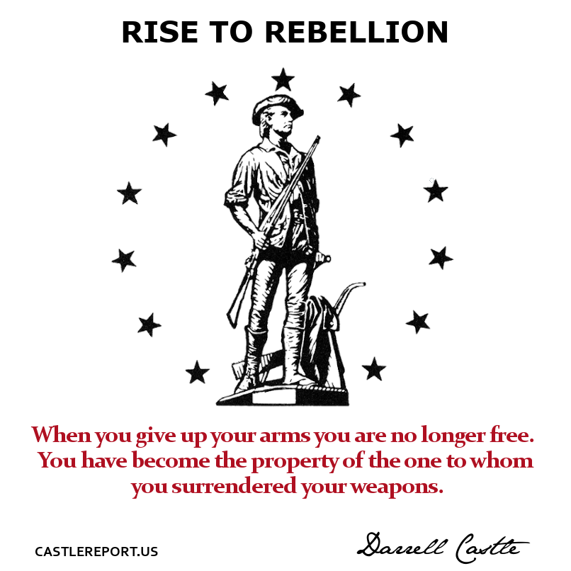 Rise to Rebellion