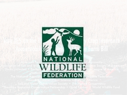National Wildlife Federation - Ad