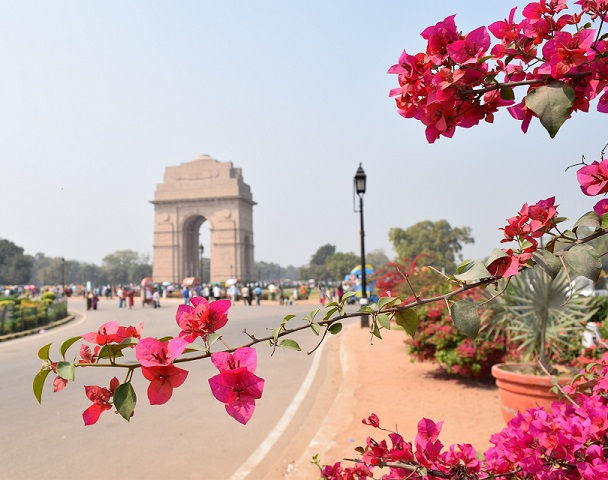 flowers_framing_india_gate_small_for_web.jpg