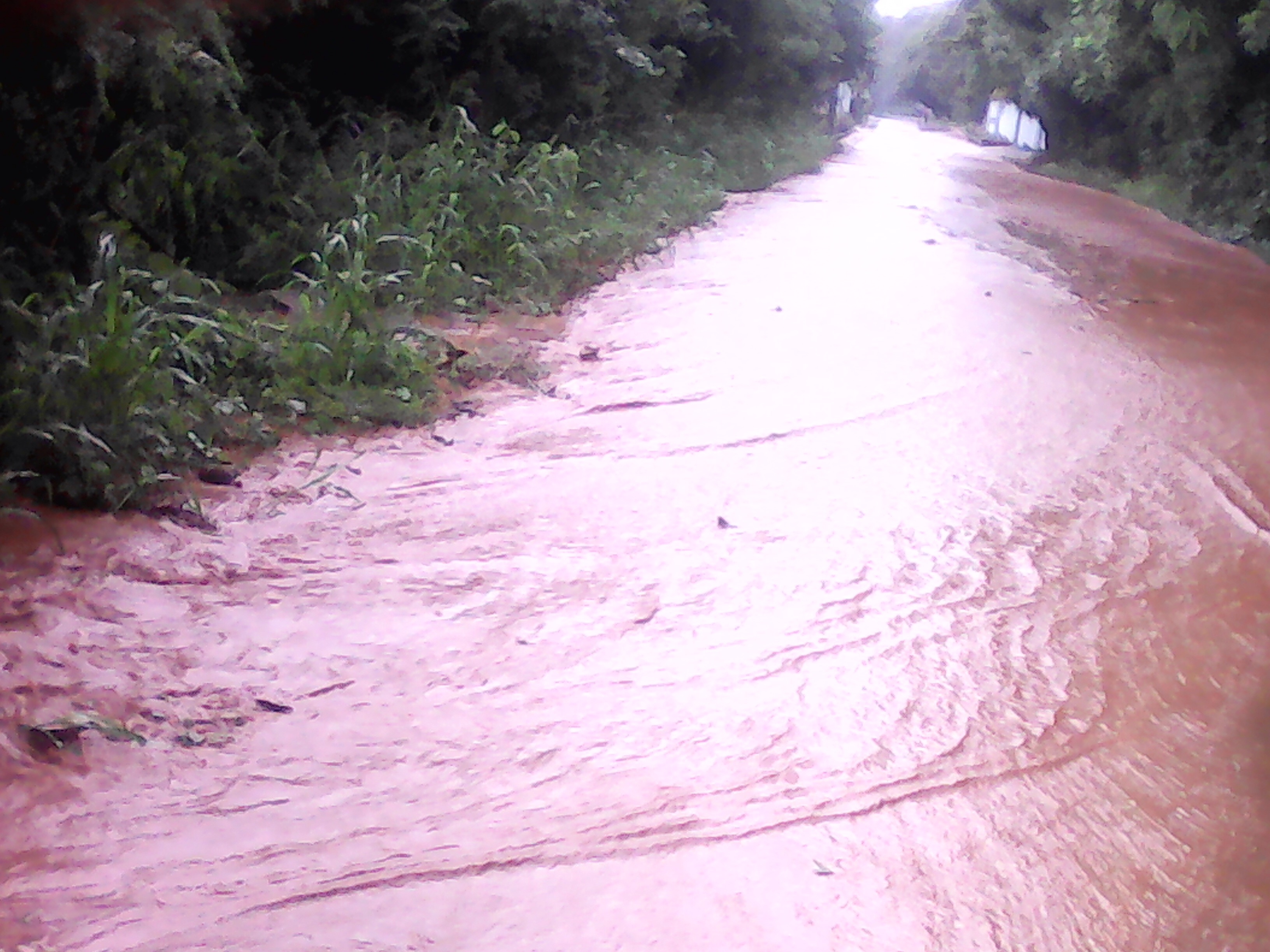 rain_on_the_street.JPG