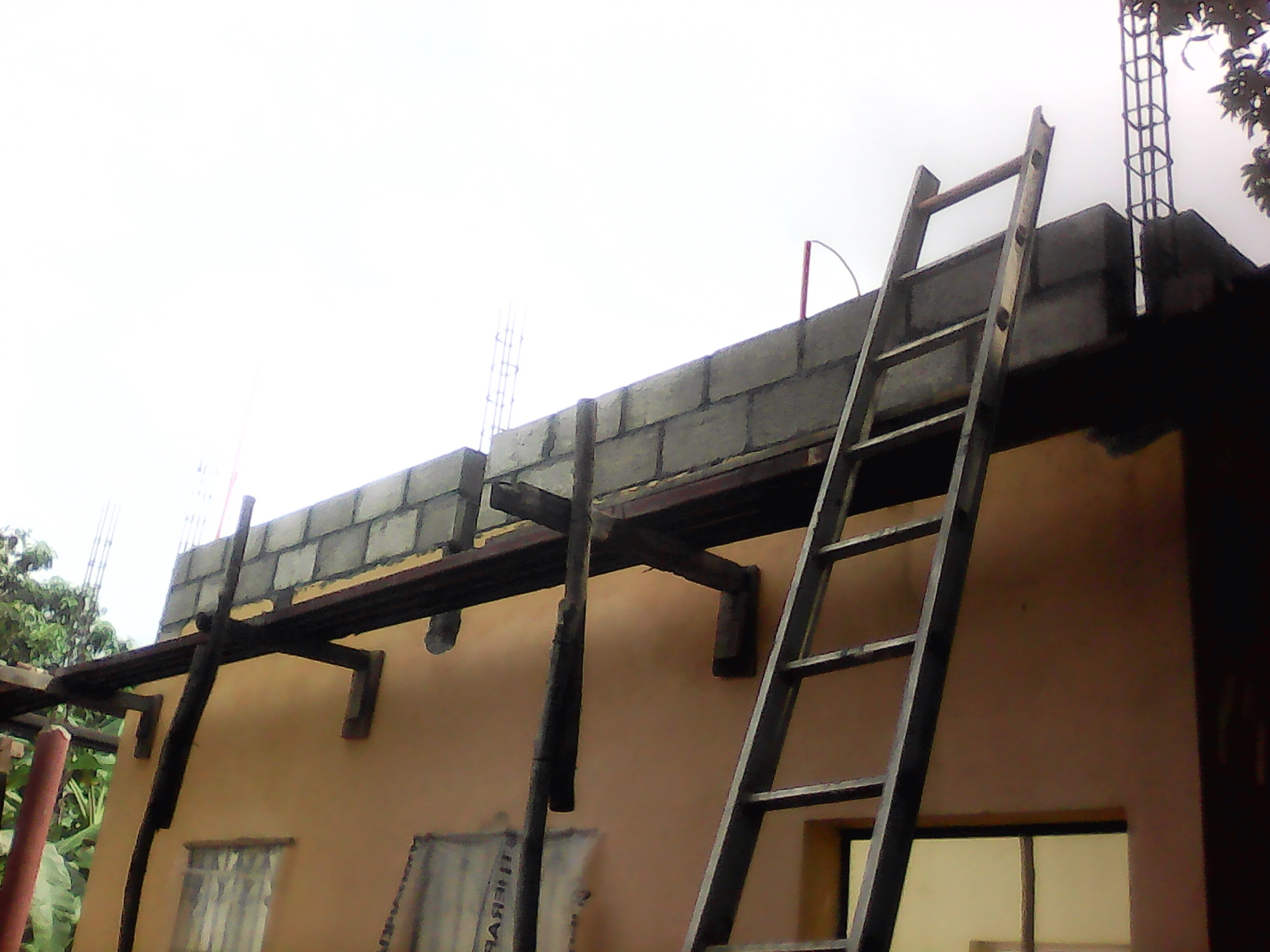 Roof_3.JPG
